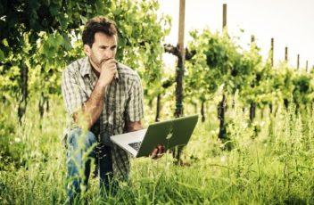 WEB-E-SOCIAL-Vinomediatica-comunicazione-marketing-mondo-vino-e1493043550262